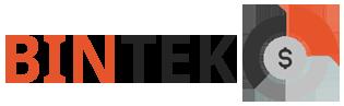 bintek.ru
